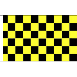 Black and Yellow Check Sleeved-257×257