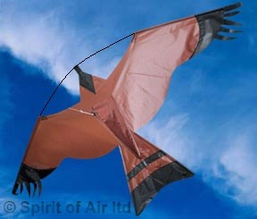 how to make a bird scarer kite