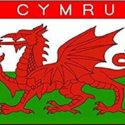 Cymru Wales flag 5ft x3ft