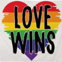 Love wins rainbow flag 5ft x 3ft with eyelets