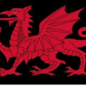 Wales Welsh flag 3ft x 2ft with black background