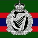 Royal Irish regiment flag 5ft x 3ft with eyelets  High quality