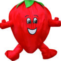 Strawberry wacky character windsock for telescopic flag poles or garden ornaments and camping festivals